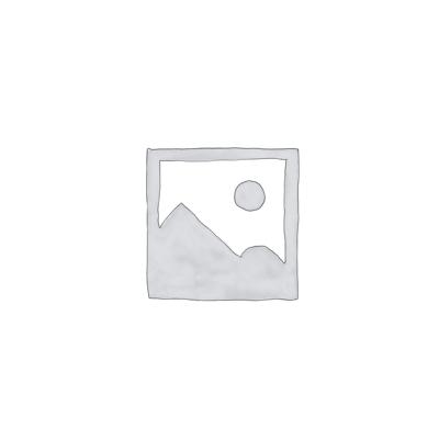 Klassiker-Magnetlesezeichen